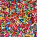 1000 origami – 1000 ευχές